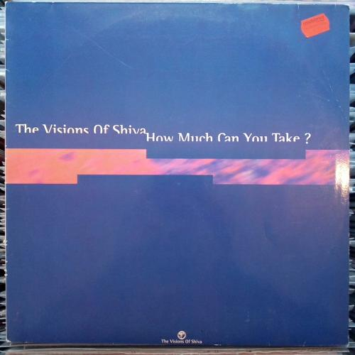 "The Visions Of Shiva - How Much Can You Take? (12"")"
